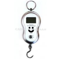 RCM - Digitální váha do 40kg Stříbrná