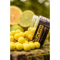 SINGLEPLAYER - Pop-up boilie Citrux